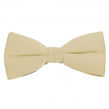 Champagne Bow Tie Solid Pre-tied Satin Mens Ties