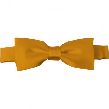 Gold Bar Bow Tie Pre-tied Satin Boys Ties