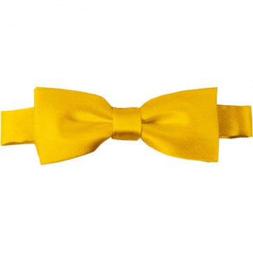 Golden Yellow Bow Tie Pre-tied Satin Boys Ties
