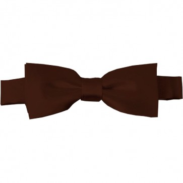 Brown Bow Tie Pre-tied Satin Boys Ties