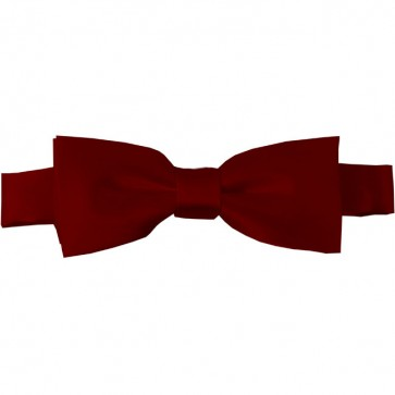 Burgundy Bow Tie Pre-tied Satin Boys Ties